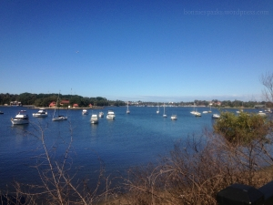 A view of the Iron Cove along the path. I was on the other side at one point.